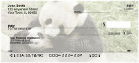 Panda Bears Personal Checks | EVC-78