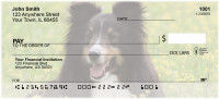 Sheltie Dog Personal Checks | EVC-86