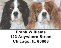 Cavalier King Charles Dogs Address Labels | LBEVC-38