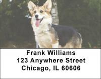 Corgi Dog Address Labels