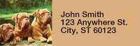 Majestic Mastiff Rectangle Address Labels