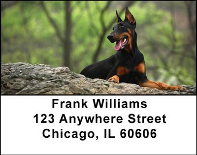 Dobermans Address Labels | LBDOG-20