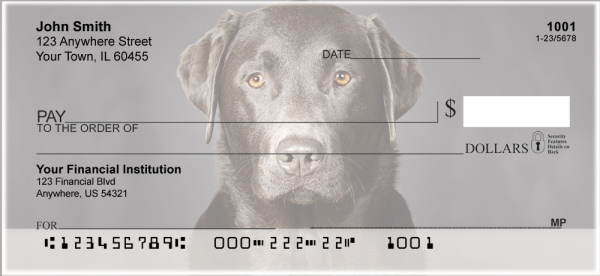 Black Labradors Personal Checks | DOG-11