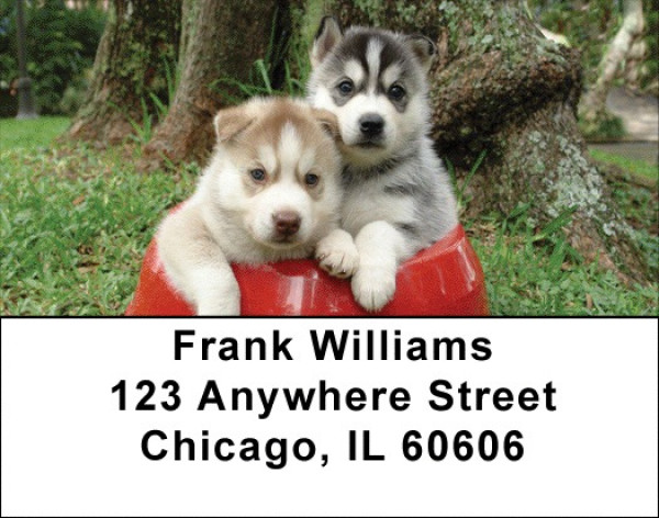 Sled Dogs Address Labels