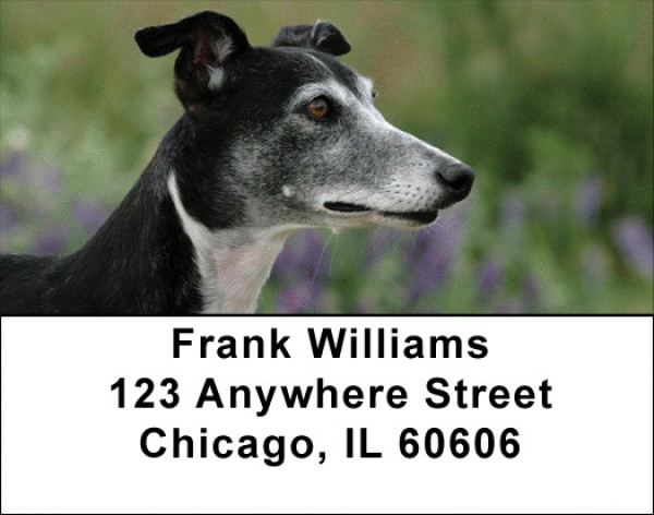 Wily Whippets Address Labels