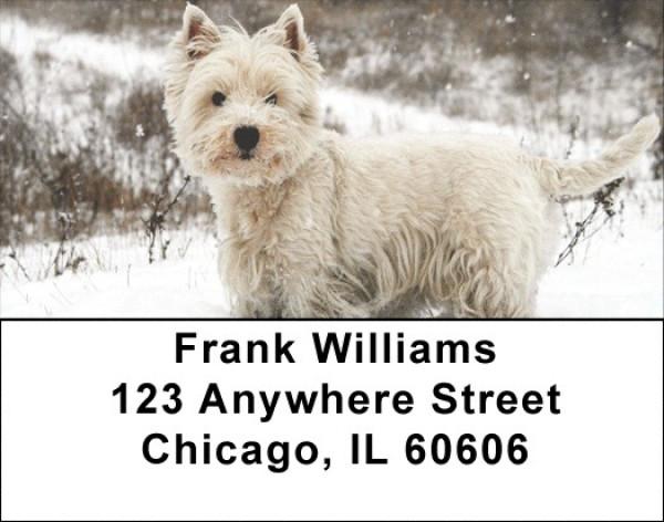 Westie Dog Address Labels