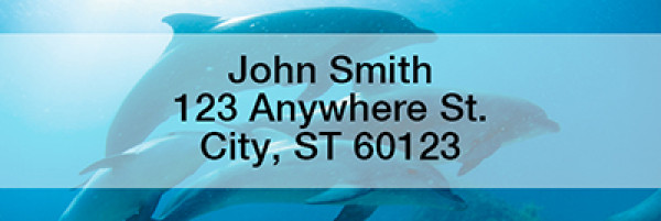 Dolphins Rectangle Address Labels | LRANI-19