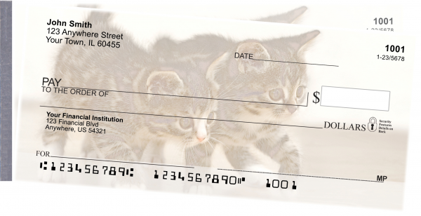 Cute Kittens Side Tear Personal Checks | STANI-06R