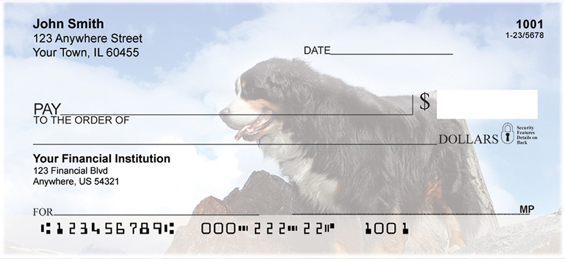 Bernese Mountain Dogs Personal Checks