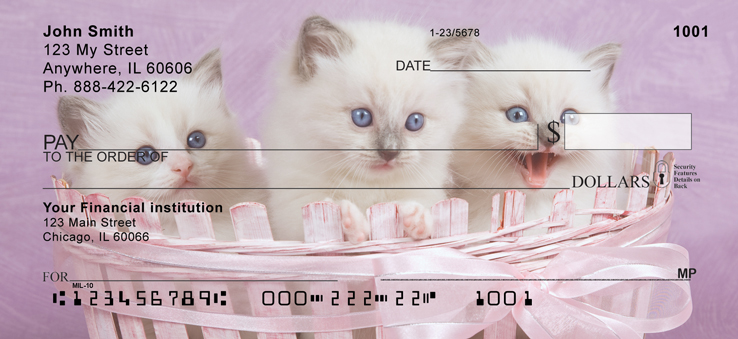 Ragdoll Kittens Personal Checks