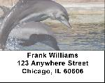 Dolphin Photos Address Labels