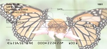 Monarch Butterfly Beauties Personal Checks