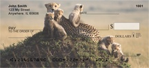 Cheetah Cubs Personal Checks
