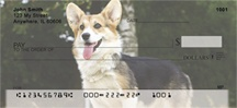 Corgi Dog Personal Checks