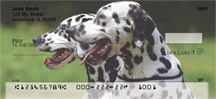Dalmatian Dogs Personal Checks