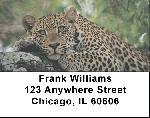 Lone Leopards Address Labels