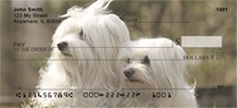 Maltese Dog Personal Checks