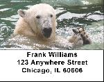 Polar Bears in the Water Address Labels