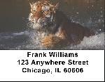 Tigers Address Labels
